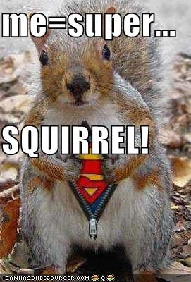 me=super... SQUIRREL!