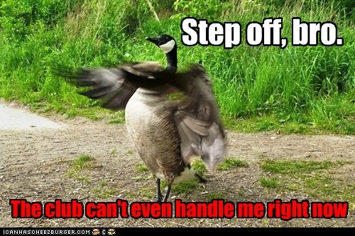 bro,cocky,fight,goose,step off,the club can't even handl,the-club-cant-even-handle-me