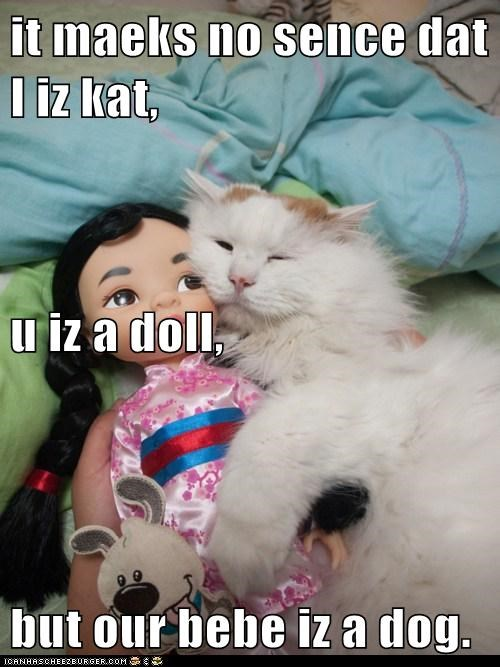 it maeks no sence dat I iz kat,  u iz a doll, but our bebe iz a dog.