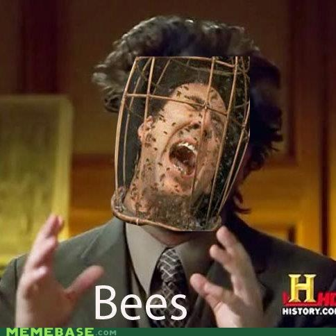 NOT THE BEES OH GOD THE BEES