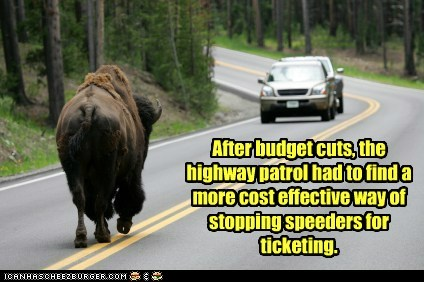 bison,budget cuts,cost effective,effective,highway patrol,speeders,ticketing
