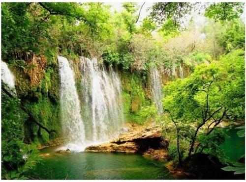 Forest,Turkey,waterfall