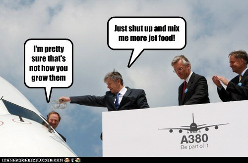 airbus,lufthansa,planes,political pictures