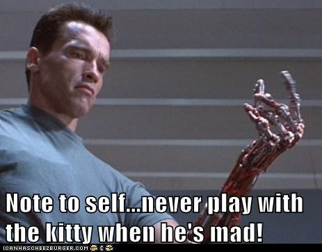 angry,Arnold Schwarzenegger,bone,hand,kitty,metal arms,scratched,stripped,terminator,The Terminator
