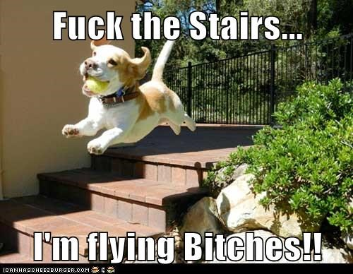 Fuck the Stairs...  I'm flying Bitches!!