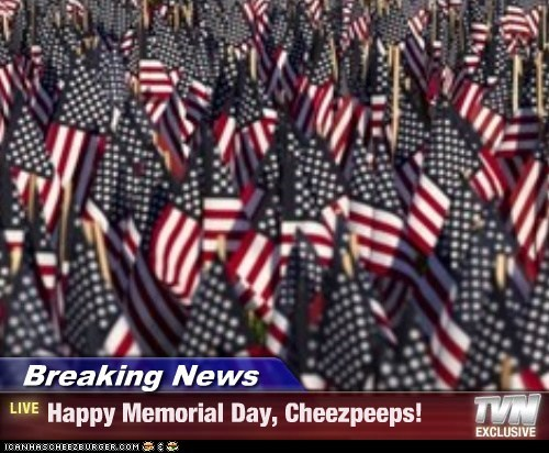 Breaking News - Happy Memorial Day, Cheezpeeps!