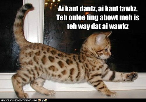 Teh Kitteh According To Genesis (I can't dance)