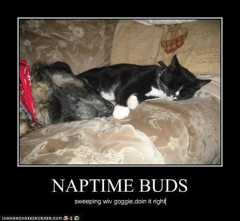 NAPTIME BUDS