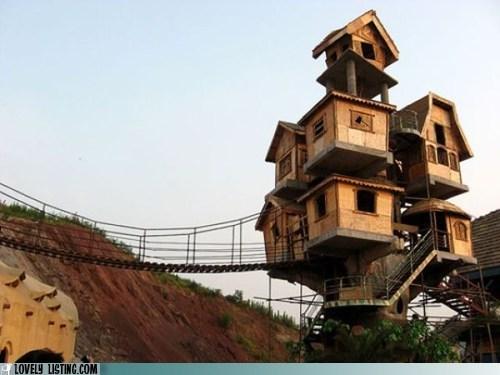 best of the week,bridge,house,stack,suspended,tower,tree