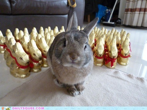 Bunday: Army of Bun-buns!