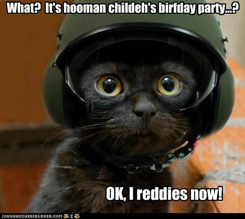 birthday,birthday party,birthdays,Cats,children,defense,guard,helmet,helmets,kids,lolcats,protection