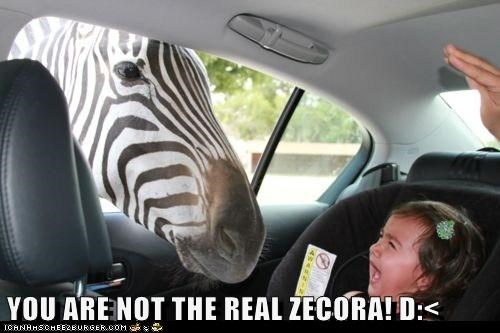 YOU ARE NOT THE REAL ZECORA! D:<