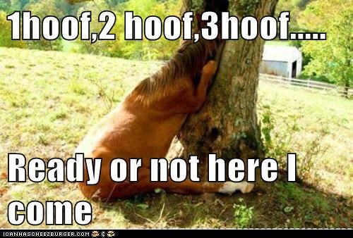 1hoof,2 hoof,3hoof.....  Ready or not here I come