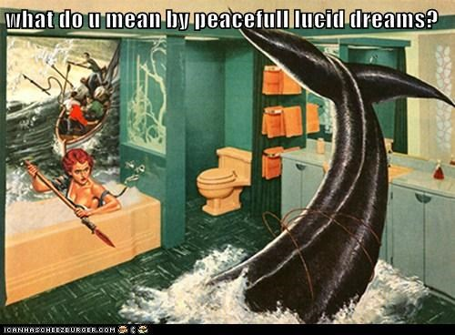 what do u mean by peacefull lucid dreams?