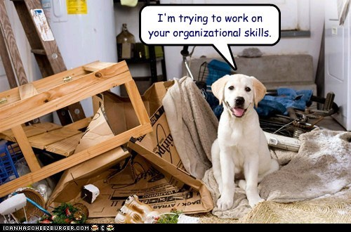 I'm trying to work on your organizational skills.