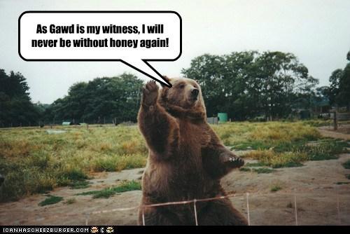 bear,field,honey,testify