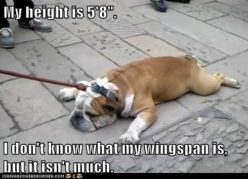 "My height is 5'8"".  I don't know what my wingspan is, but it isn't much."