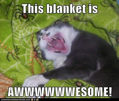 This blanket is  AWWWWWWESOME!