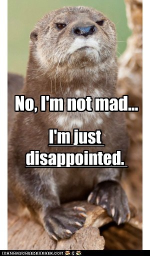angry,disappointed,hurtful,judgemental,mad,otter,parenting