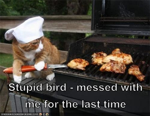 barbeque,bbq,bird,cook,food,nom,revenge