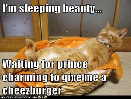 I'm sleeping beauty...  Waiting for prince charming to give me a cheezburger