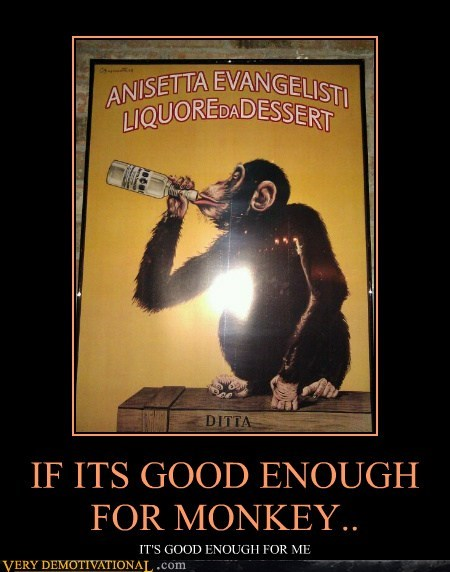 IF ITS GOOD ENOUGH FOR MONKEY..