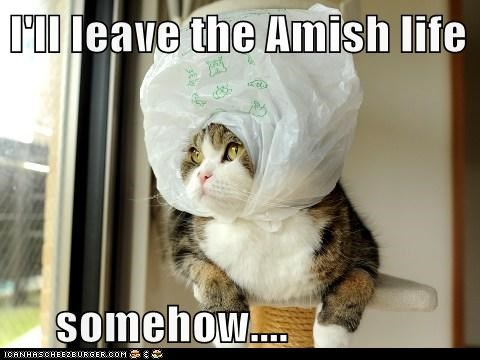 I'll leave the Amish life       somehow....