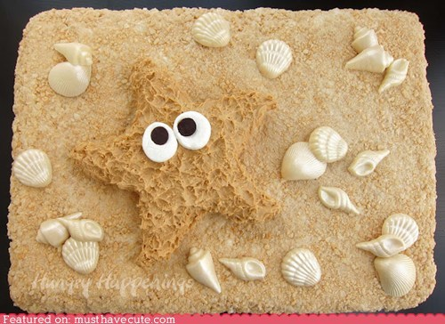 beach,cake,epicute,fudge,peanut butter,sand,shells,starfish