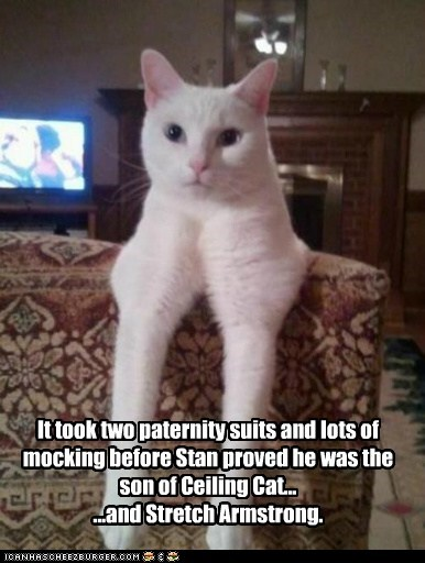 It took two paternity suits and lots of mocking before Stan proved he was the son of Ceiling Cat... ...and Stretch Armstrong.