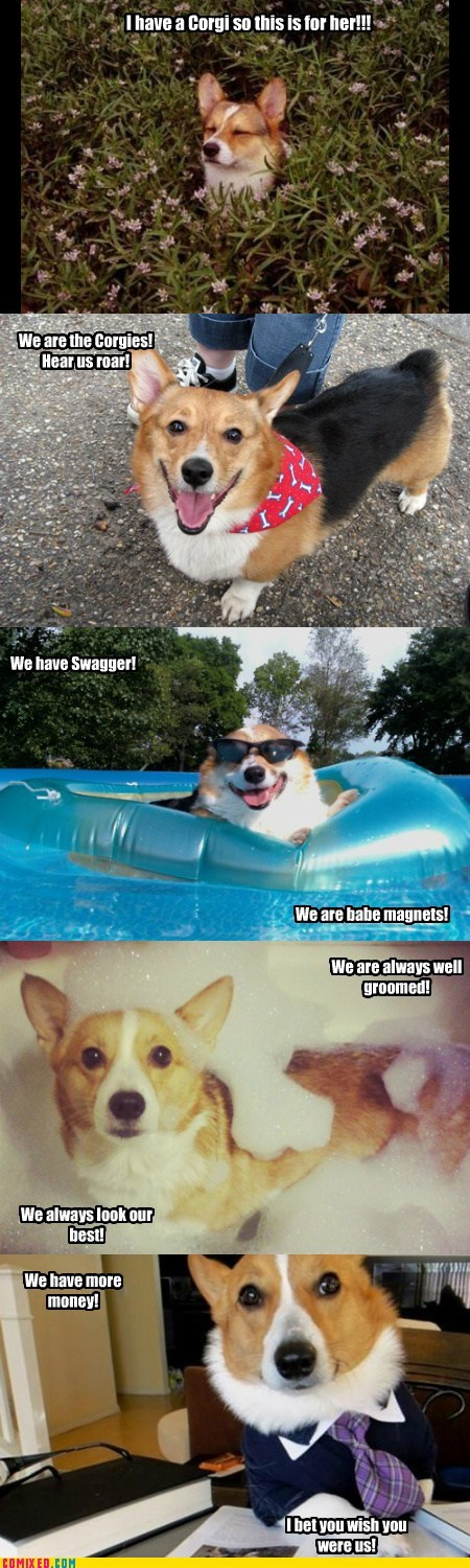 The Corgi March
