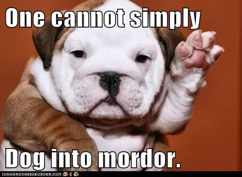 One cannot simply  Dog into mordor.