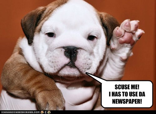 SCUSE ME! I HAS TO USE DA NEWSPAPER!