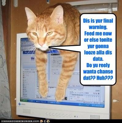 Dis is yur final warning. Feed me now  or else tonite yur gonna looze alla dis data.  Do yu reely wanta chanse dat?? Huh???