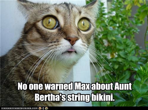 No one warned Max about Aunt Bertha's string bikini.