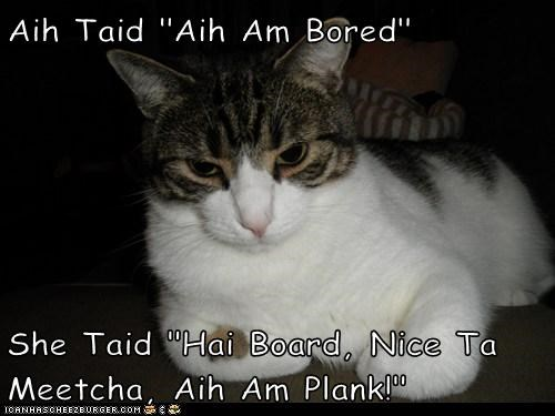 "Aih Taid ""Aih Am Bored""  She Taid ""Hai Board, Nice Ta Meetcha, Aih Am Plank!"""