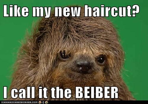 Like my new haircut?  I call it the BEIBER