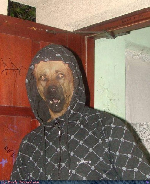 costume,dogs,g rated,Hall of Fame,mask,poorly dressed,scary,what