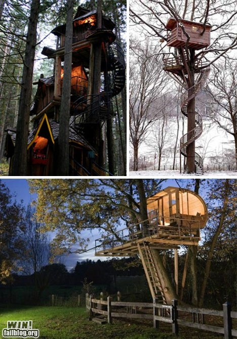 Tree Houses WIN