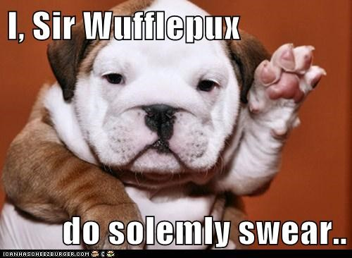 I, Sir Wufflepux  do solemly swear..