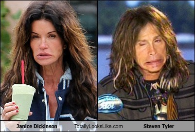 Janice Dickinson Totally Looks Like Steven Tyler