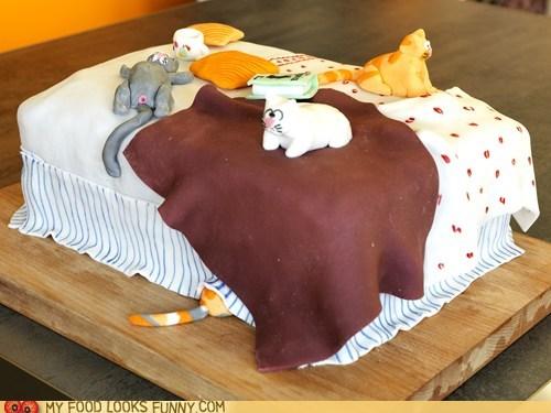 bed,cake,Cats,fondant,weird