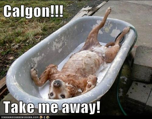 Calgon!!!  Take me away!