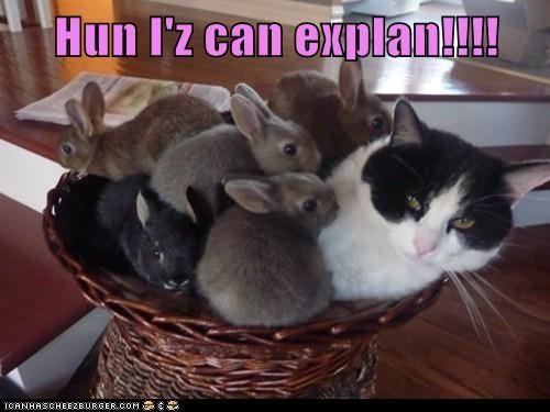 Hun I'z can explan!!!!