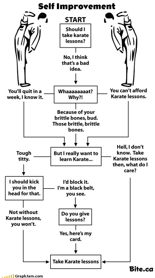 Should I Take Karate Lessons?
