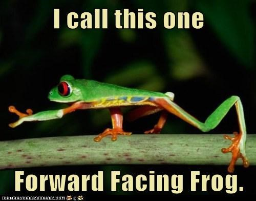 I call this one  Forward Facing Frog.