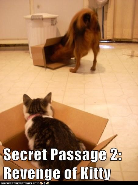 Secret Passage 2: Revenge of Kitty