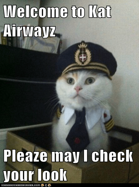Welcome to Kat Airwayz  Pleaze may I check your look
