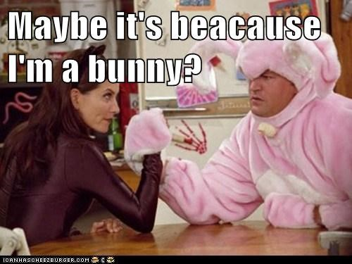 Maybe it's beacause I'm a bunny?