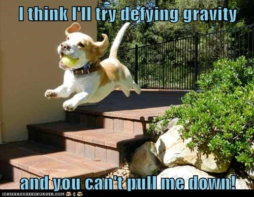 I think I'll try defying gravity  and you can't pull me down!