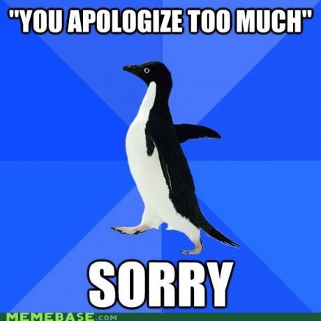 apologies,i did this always,socially awkward,socially awkward penguin,sorry,sorry sorry,too much